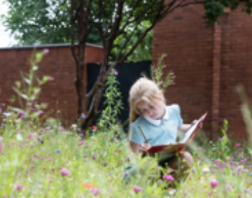Child reading in the art garden at the Whitworth