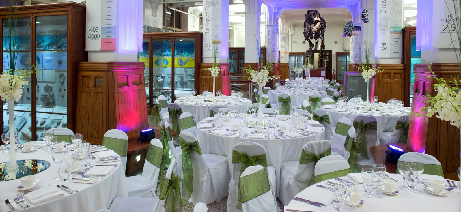 Hire manchester museum hire junglespirit Images